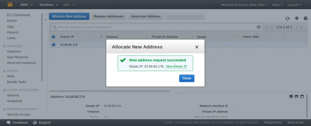 Allocate New Elastic IP